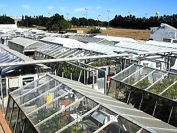 Orchard Park Research Greenhouses